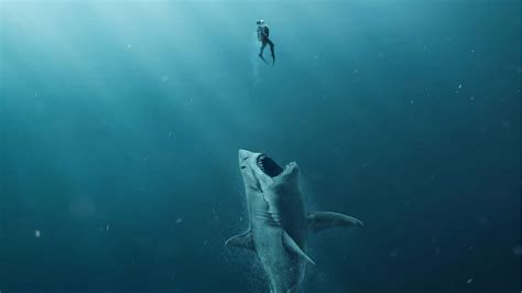 The jaws of death are filling up DStv for Shark Week in July